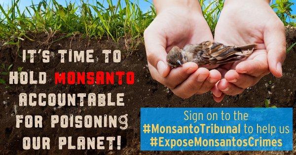 Expose Monsanto